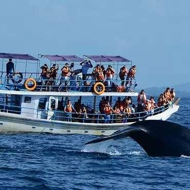 Luxury-Yachts-Sunset-Trips-in-Sri-Lanka